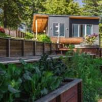 огород с грядками дача фото дизайн