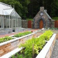огород с грядками дача фото идеи