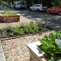 огород с грядками дизайн идеи