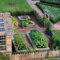 огород с грядками фото идеи