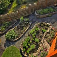 огород с грядками идеи фото