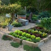 огород с грядками на даче фото идеи