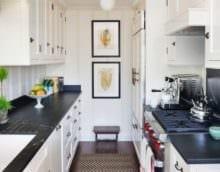двухрядная планировка кухни