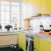 прямоугольная кухня идеи дизайн