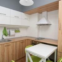 прямоугольная кухня интерьер фото