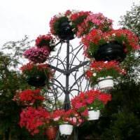 садовый участок 4 сотки тонкости ландшафтного дизайна идеи декора
