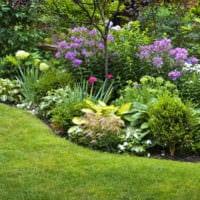 садовый участок 4 сотки тонкости ландшафтного дизайна оформление идеи