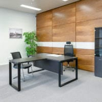 просторный кабинет руководителя