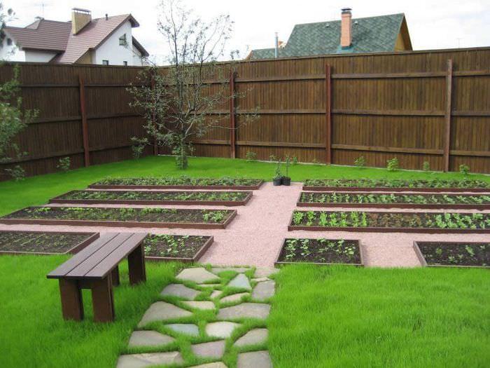 Фото опрятных грядок на небольшом садовом участке