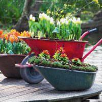 Клумбы из садовых тачек своими руками