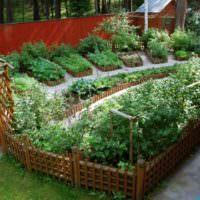 Оригинальное оформление грядок на садовом участке