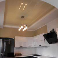 пример яркого интерьера потолка кухни картинка