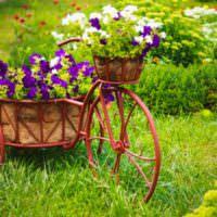 Цветки из старого велосипеда