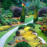 Сад с цветущими растениями