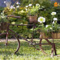 Старый велосипед в роли цветочной клумбы
