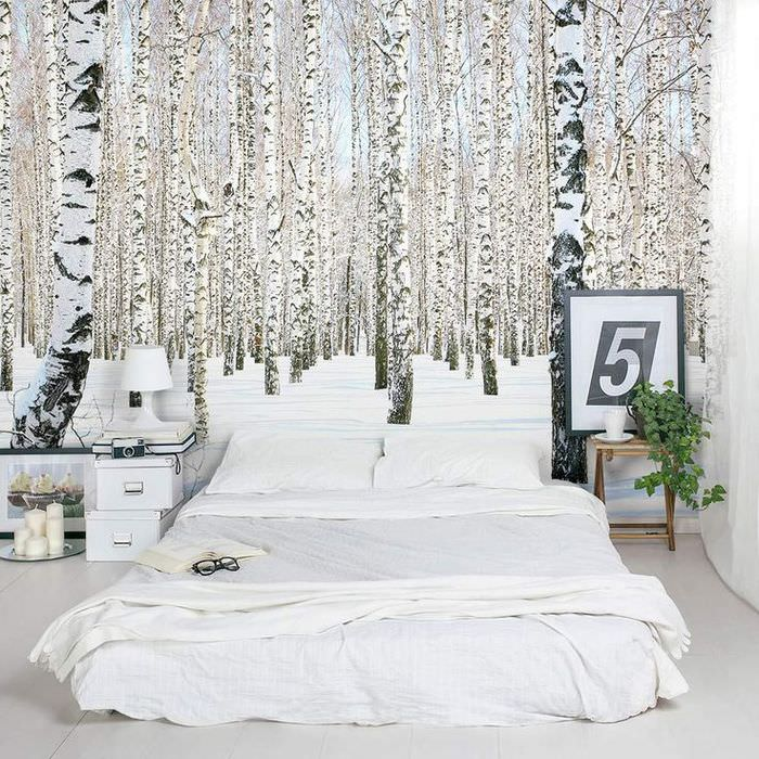 3D фотообои с березками на стене спальни