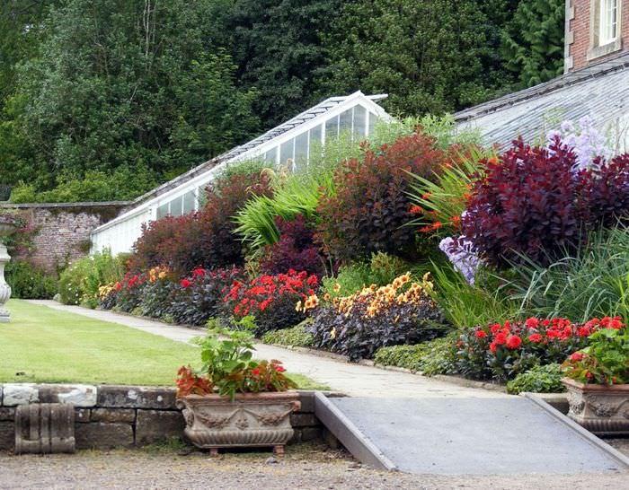 Миксбордер из цветов и кустарников на склоне дачного участка