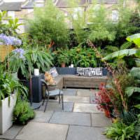 Оформление дачного дворика растениями в кадках