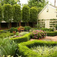 Кустарники под стрижку в дизайне маленького сада