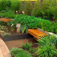 Геометрические клумбы в дизайне сада