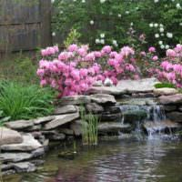 Розовые цветы над искусственным водопадом