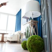 Декоративные пуфы из мха на полу комнаты