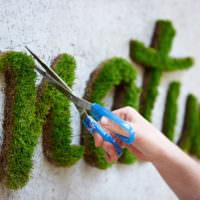 Надписи на стене из стабилизированного мха
