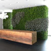 Дерево и мох в современном дизайне помещений