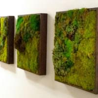 Картины из живого мха для декорирования стены