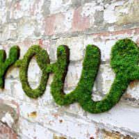 Зеленая надпись из мха на старой кирпичной стене