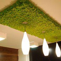 Декор потолочного светильника мхом