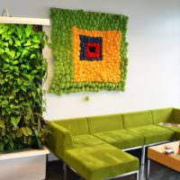 Живая стена из зеленых растений в гостиной