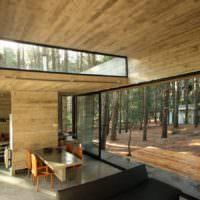 Загородный дом с прозрачными стенами