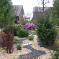 Цветная мульча в частном саду