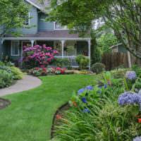 Классический газон в оформлении садового участка