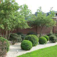 Круглые композиции из растений в дизайне сада