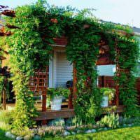 Крыльцо частного дома с вьющимися растениями