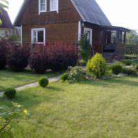 Зеленая лужайка перед дачным домиком