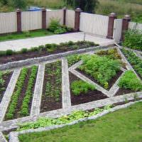 Красивое оформление огородных грядок