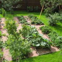 Место для выращивания овощей на приусадебном участке