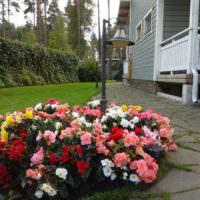 Клумба с яркими цветами перед крыльцом загородного дома