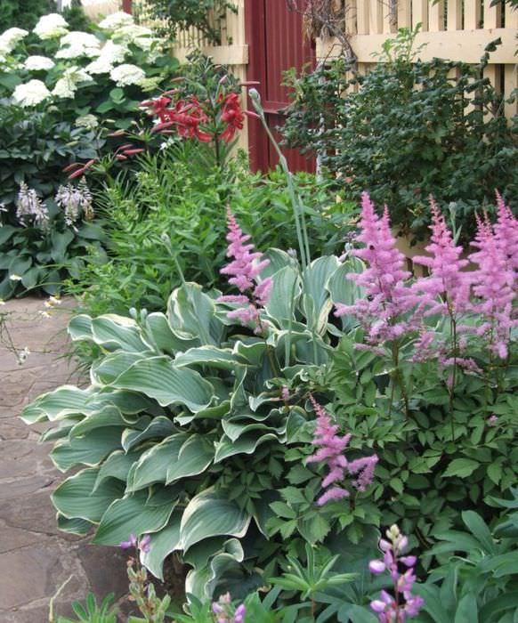 Сочетание цветовых оттенков в дизайне сада