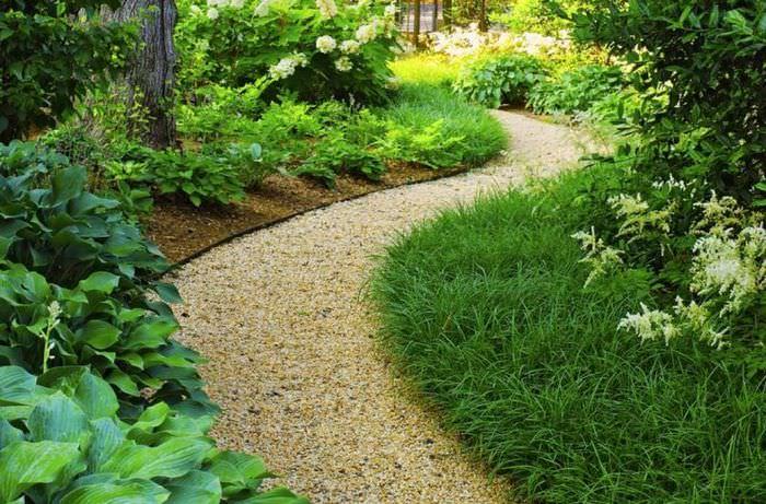 Извилистая дорожка в дизайне небольшого сада
