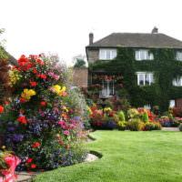 Украшение частного участка цветущими растениями