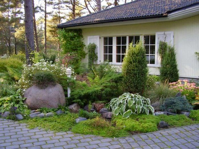 Клумба с многолетними растениями перед окном жилого дома
