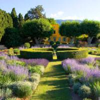 Геометрические формы в саду классического стиля