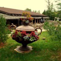 Античная ваза в роли садовой клумбы