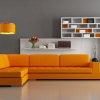 Оранжевый диван и белые книжные полки
