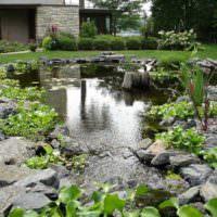 искусственный водоем с рыбками на садовом участке