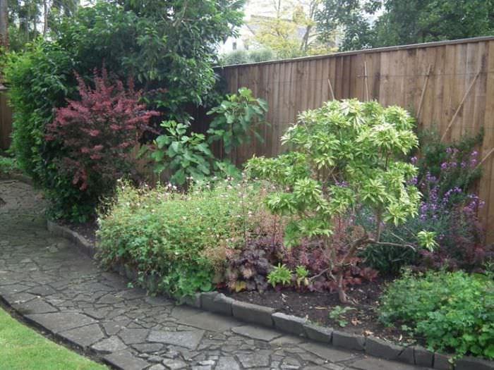 Дикий миксбордер вдоль деревянной изгороди садового участка